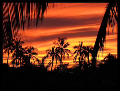 Sunset in PV-ants pic